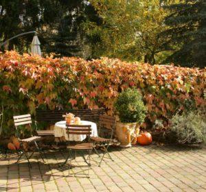Sitzecke-im-Herbst